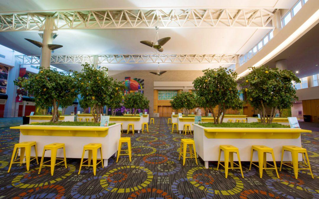 CUSTOM ARTIFICIAL TREES: FAUX LEMON TREE GROVE FOR EVENT