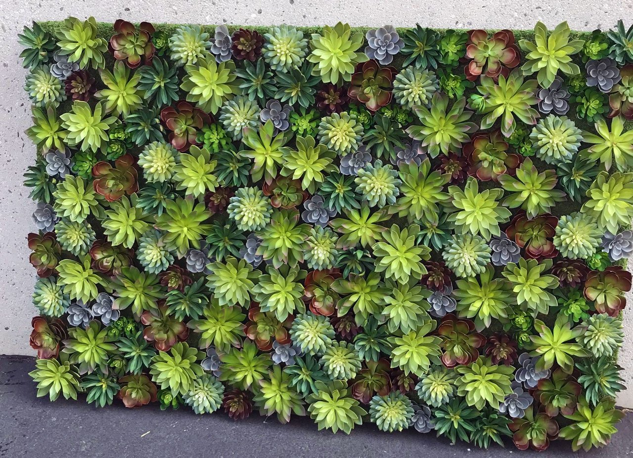 Mixed Artificial Succulent Wall Planting Make Be Leaves