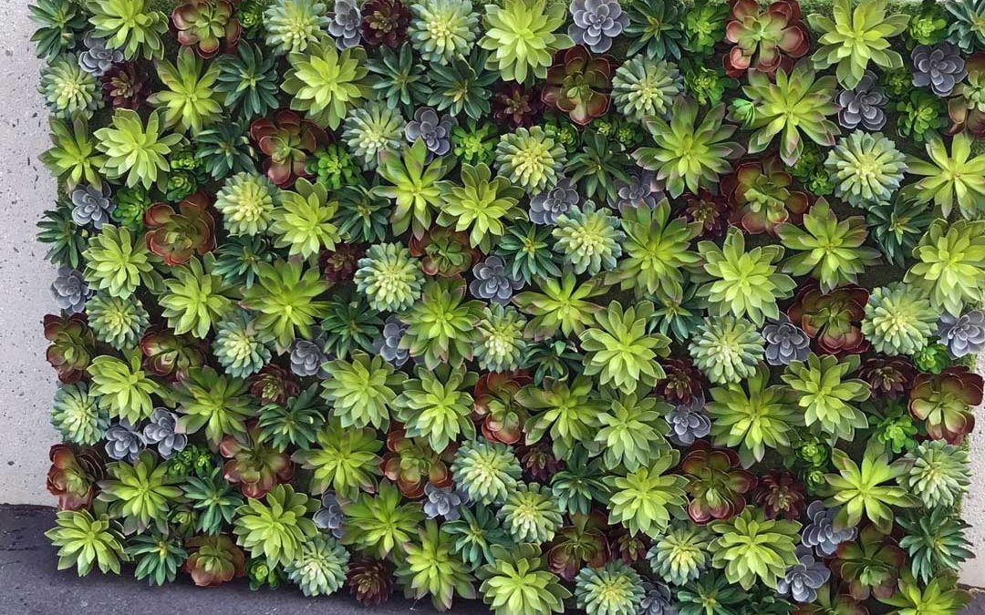 Mixed Artificial Succulent Wall Planting